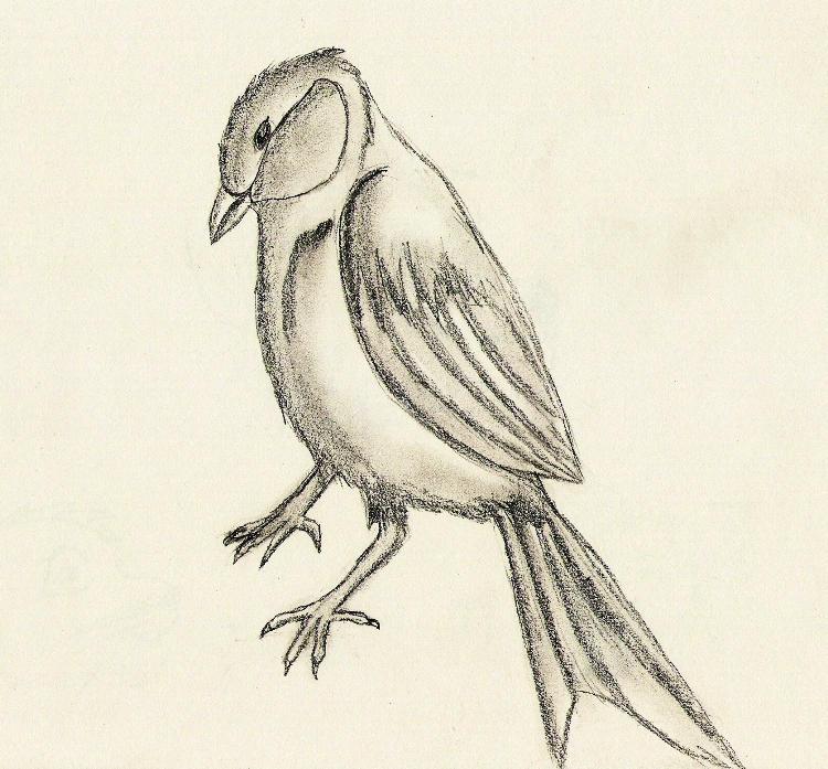 My Bird by Goldsturm