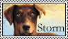 Survivors: Storm Stamp by Lots-of-Stamps