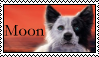 Survivors: Moon Stamp by Lots-of-Stamps