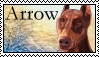 Survivors: Arrow Stamp by Lots-of-Stamps