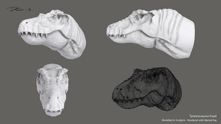 3D T-Rex Head