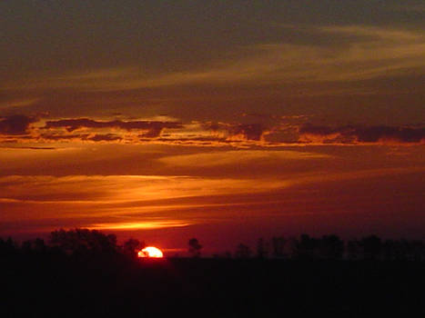 sun rise 1