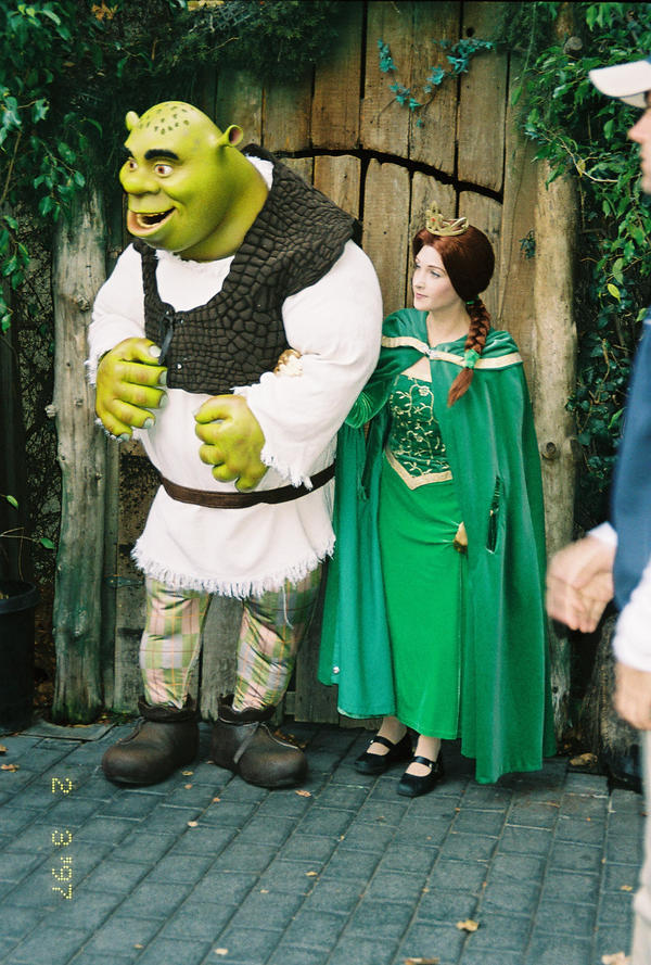couples therapy for shrek and fiona essay