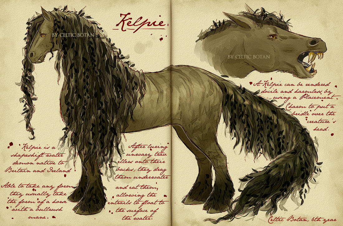 Care of Magical Creatures Assignment - Kelpie by CelticBotan