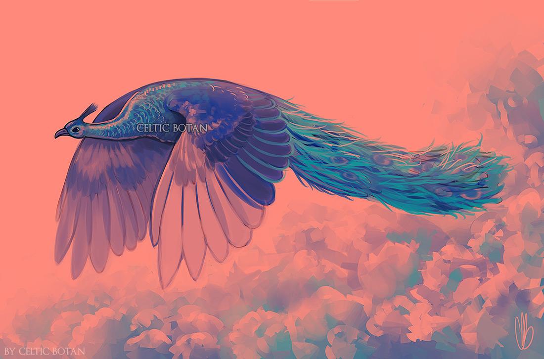 Flight by CelticBotan