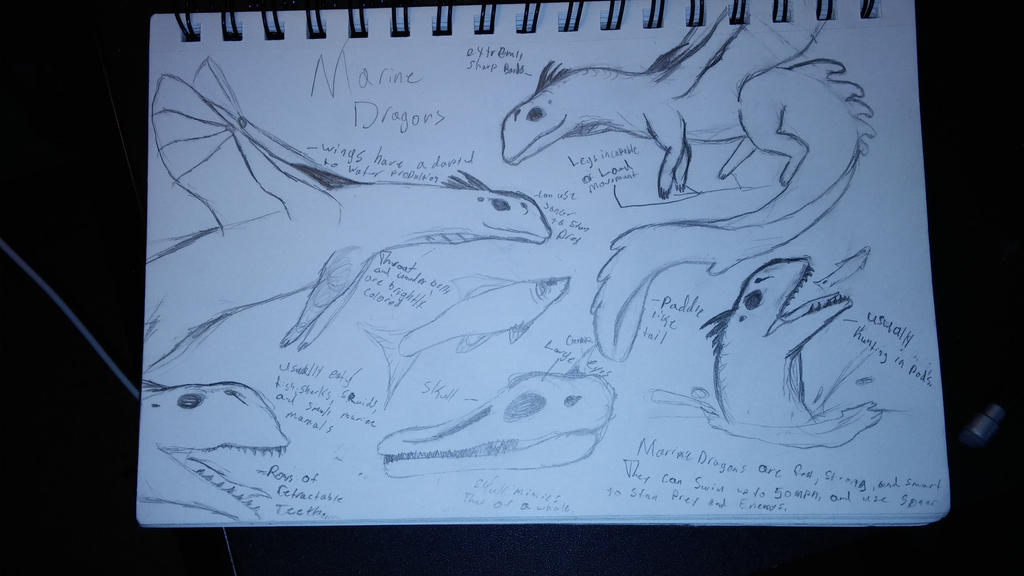 Marine Dragon sketches by Dinoal188