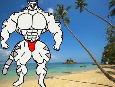 Bara mercenary at the beach by htffurry64