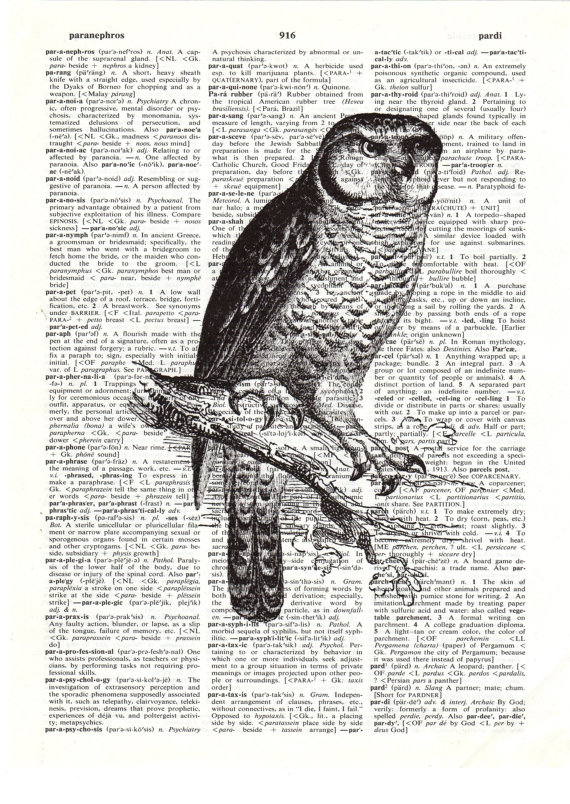 Black and white owl print by sugarrndspice
