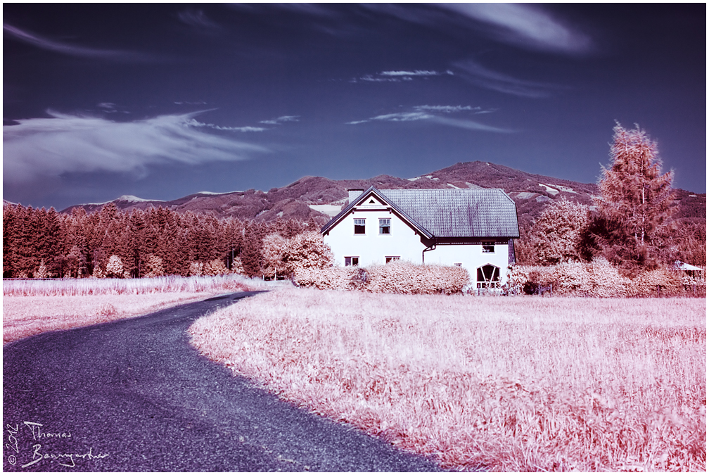 A house in Infrared Village by Argolith