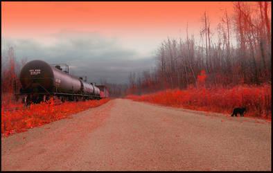 Haunted Train by charminou