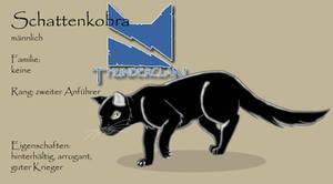 Warrior Cats OC: Schattenkobra (translation below)