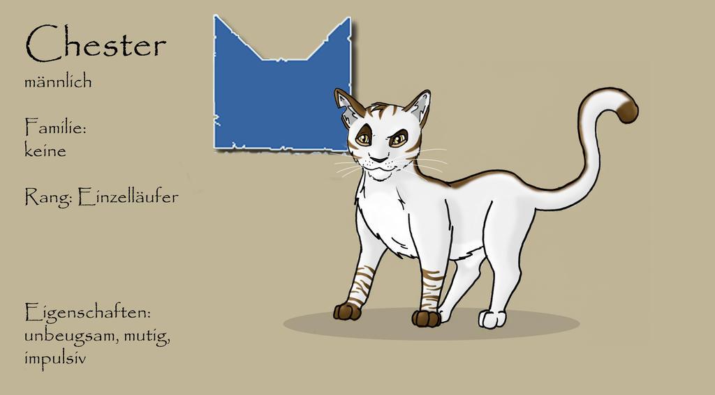 Warrior Cats OC Chester translation Below By Zelda Freak91 On DeviantArt