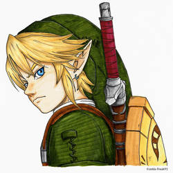 Link (Marker pen) by zelda-Freak91