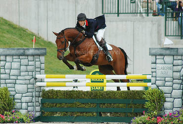 Rolex 2010 - Cool Mountain 2
