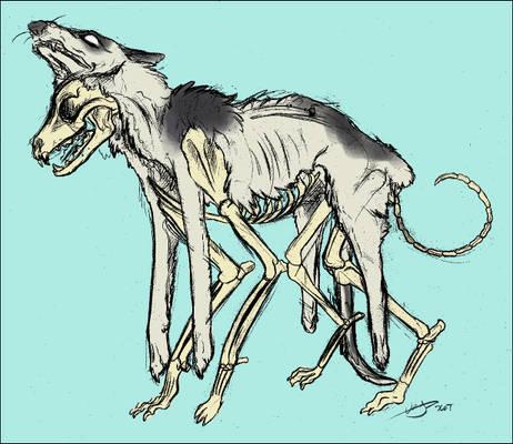 Onyx Skeleton