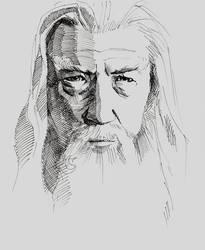 Gandalf by Paskhalidi