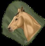 Realism- Buck