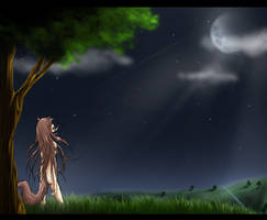 Spice and Wolf by Frodse