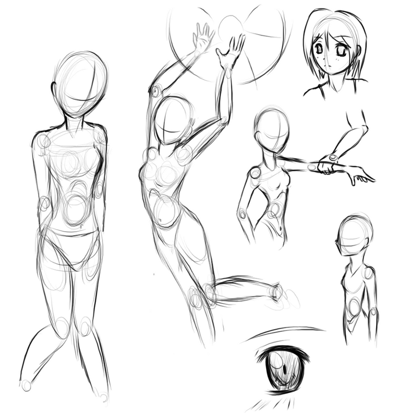 human anatomy practice by Frodse on DeviantArt