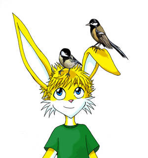 Bird head Toby