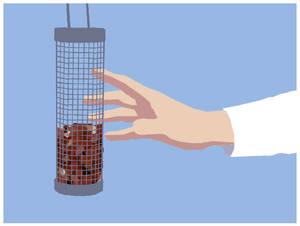 Grab the bird feeder
