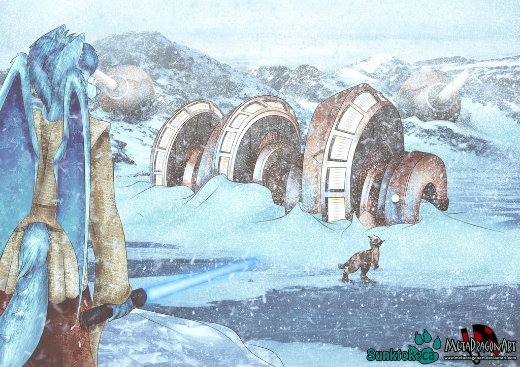 star wars furry collaboration with sunktokeca by MetaDragonArt