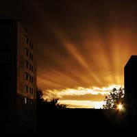 Golden Rays by vlastas