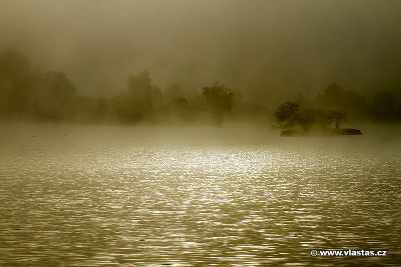 Fog by vlastas