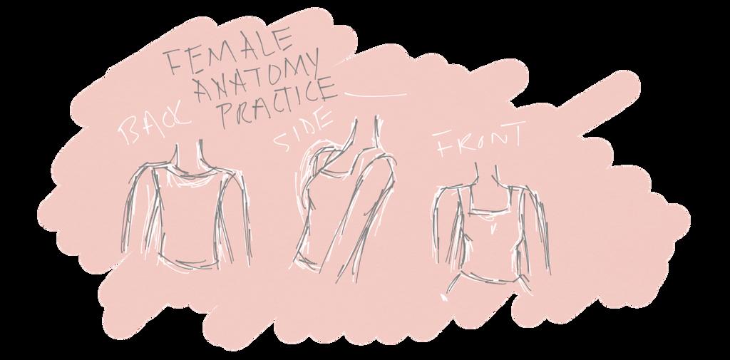Skerry Sketches #11 - Female Anatomy Practice - by SkerryBlackberry ...