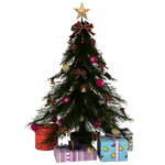STOCK TERA Online Small Christmas Tree and Present