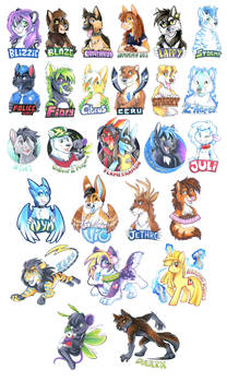 Badge Compilation 2013-2014