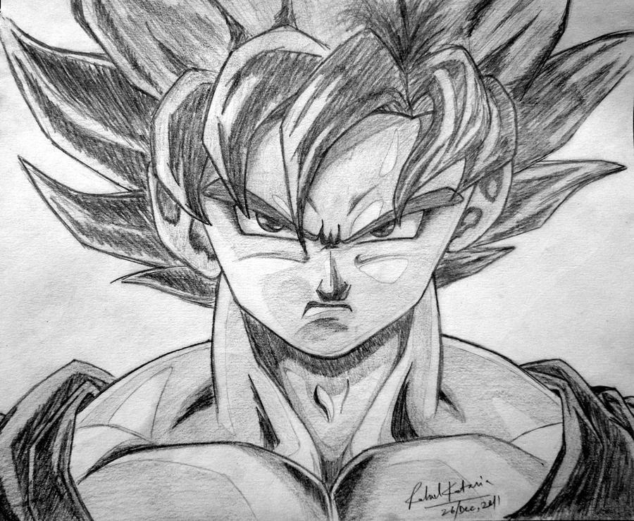 Goku by animeR96
