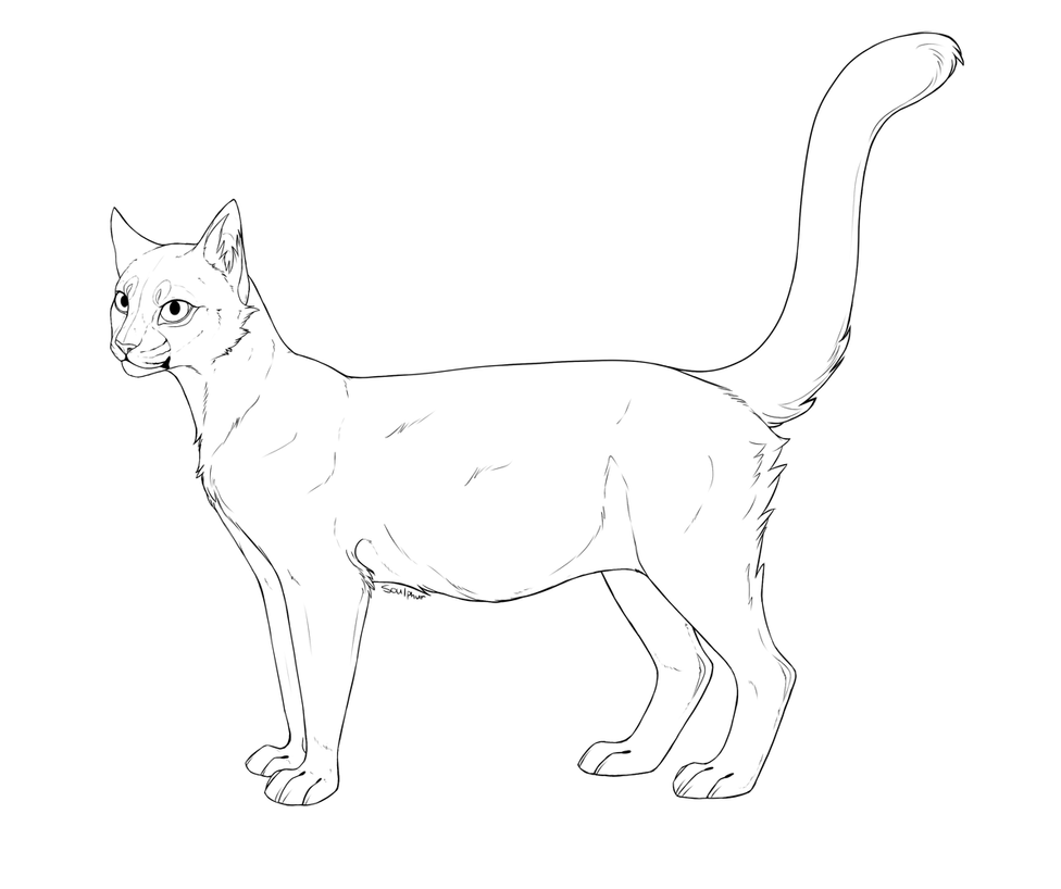 Free Feline Big Cat Lineart
