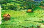 Landscape lesson #3 : Paddle field