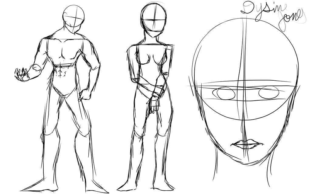 Human Anatomy Practice By Nyzii2001 On Deviantart
