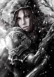 Diablo Contest - Demon Hunter
