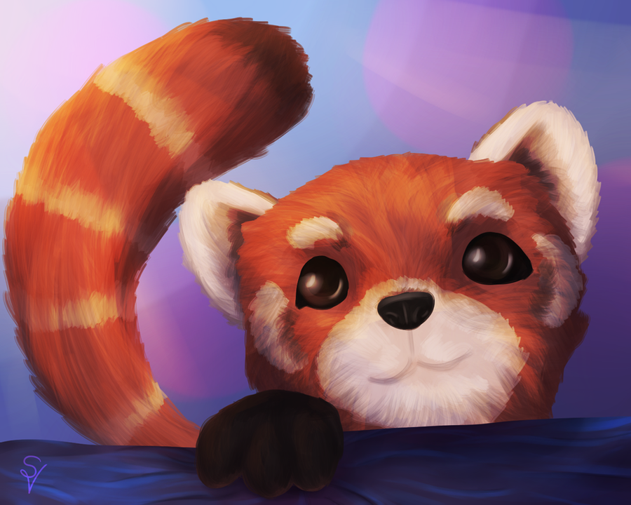 Red Panda by SOSArtStuff