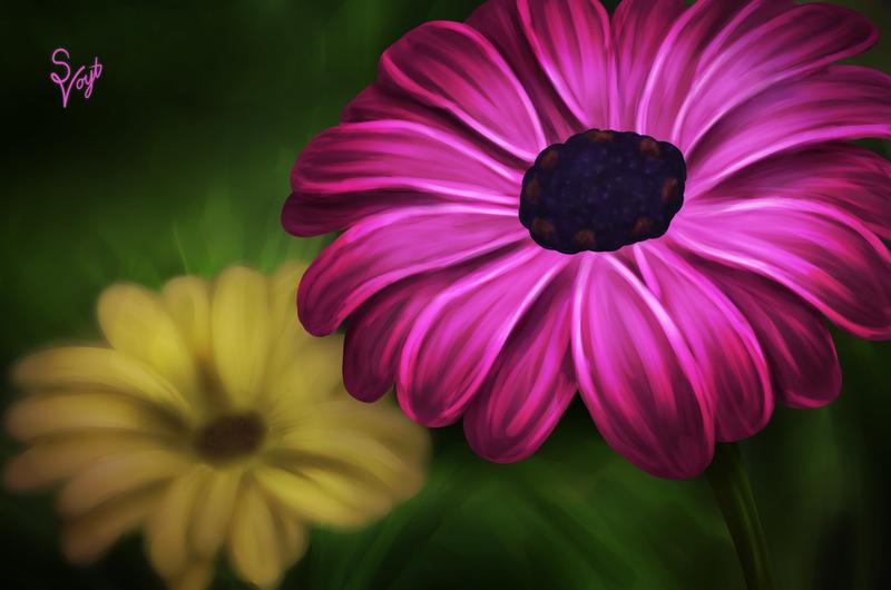 Flowers by SOSArtStuff
