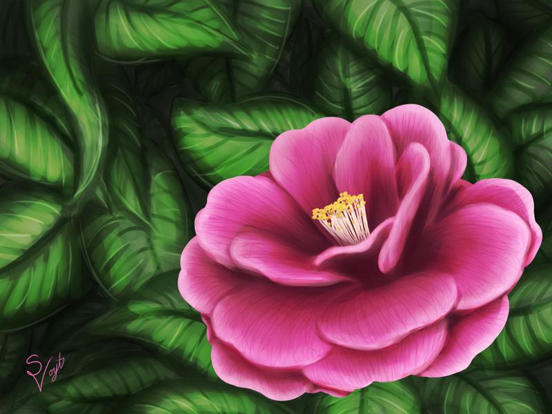 Flower by SOSArtStuff