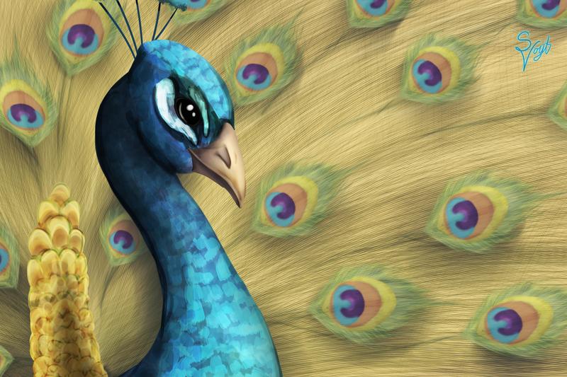 Peacock by SOSArtStuff