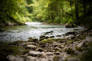 Slovenia River 3 by Lakela