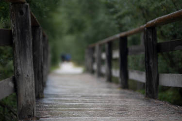 Rainy Bridge 1