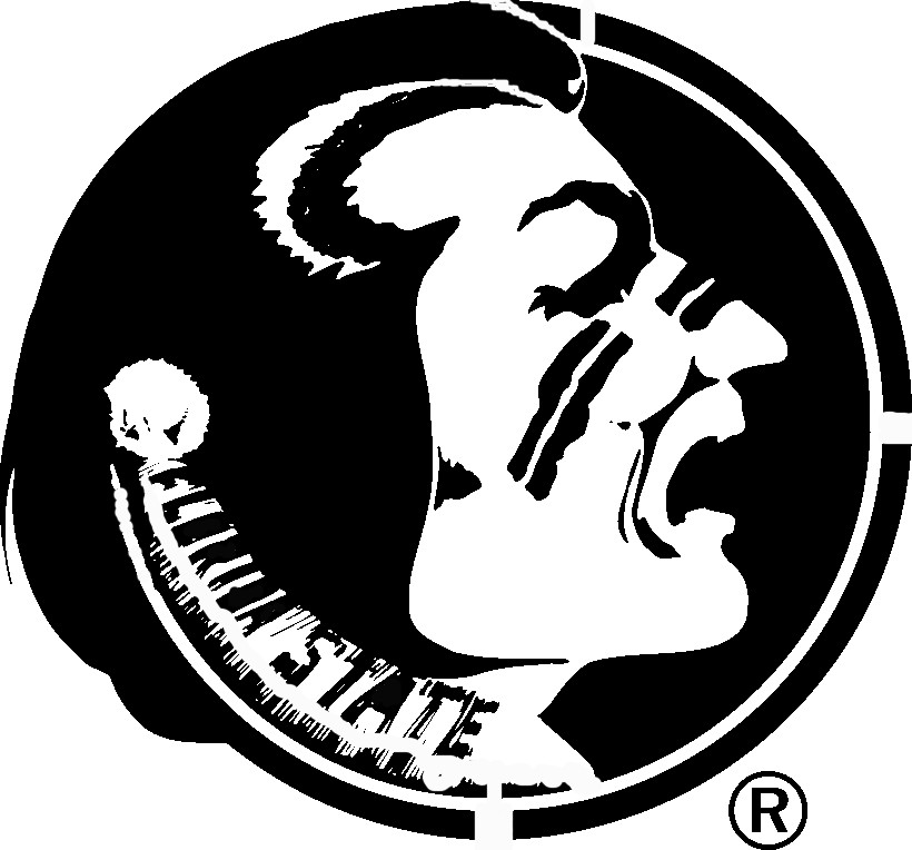 FSU Stencil