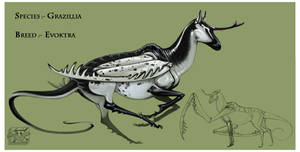 Grazillia Evoktra by Teggy