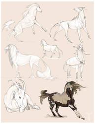Commission Alien Equines