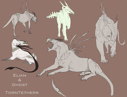 Sketchpage for TornTethers by Teggy