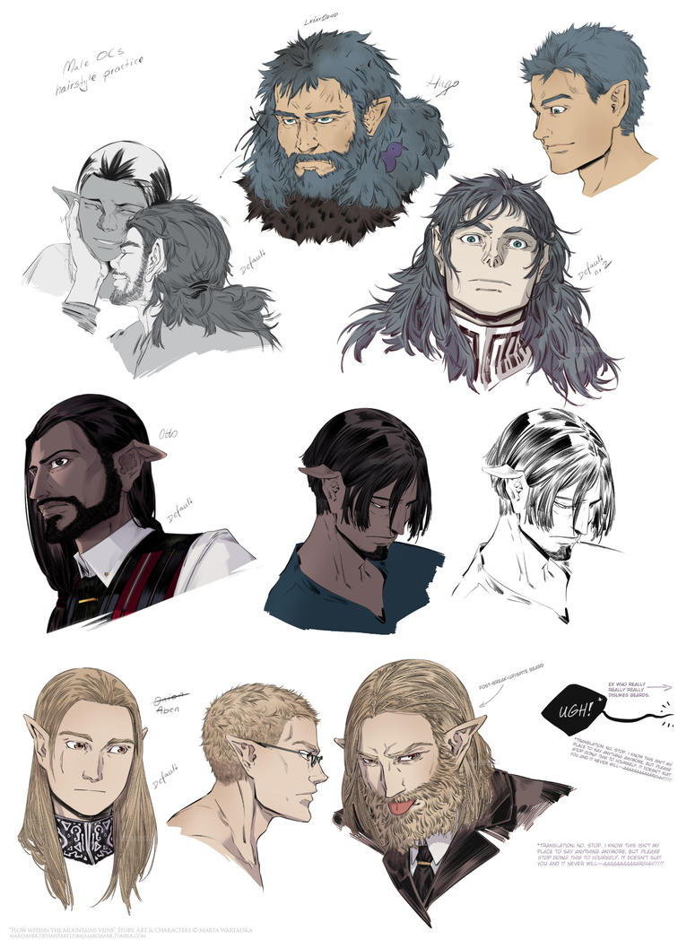 FWMV: Hairstyle/Beards Practice by Marcianek