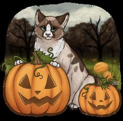 pumpkin portrait by lace-y