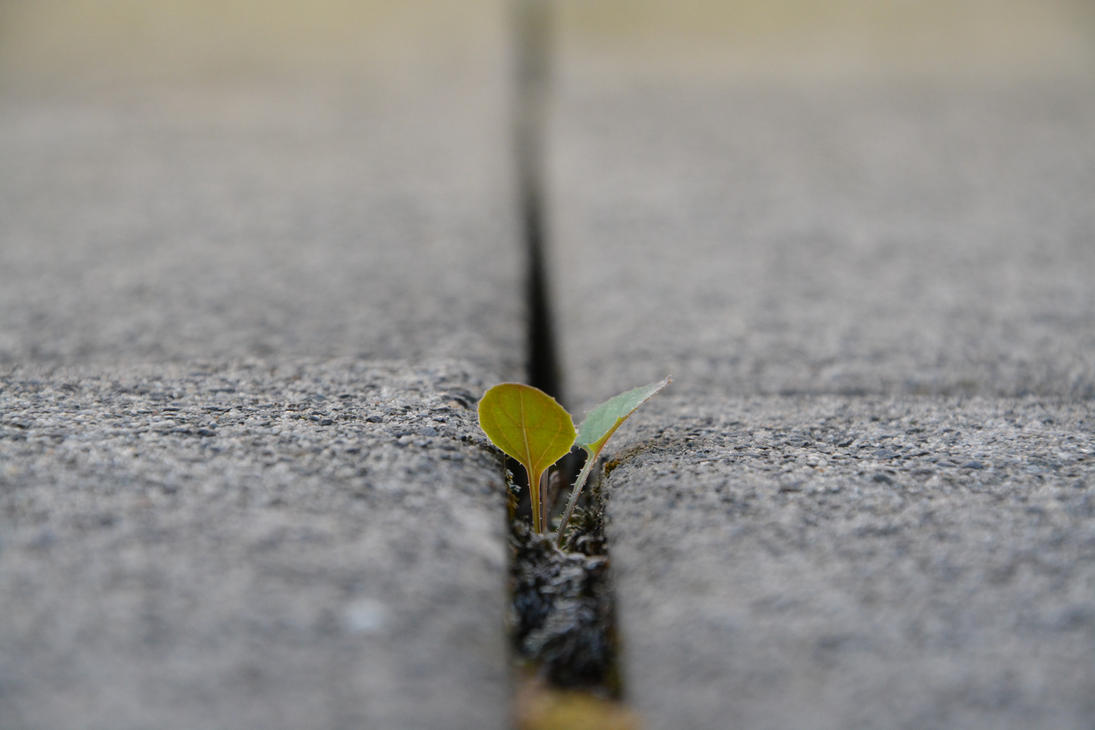Keep going! (#002) by mof-te