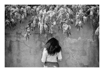 blossom by SimonSawSunlight